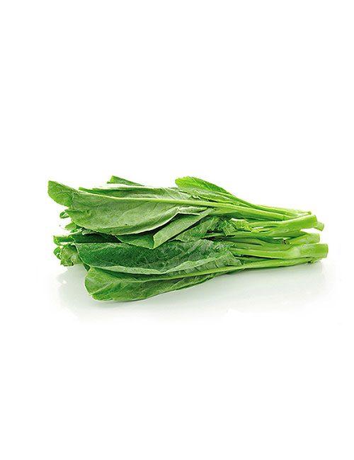 botte-de-blette-legume-nicolas-durand-producteur-local-gard