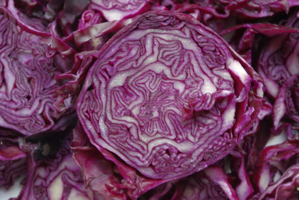 Le chou rouge roi des antioxydants