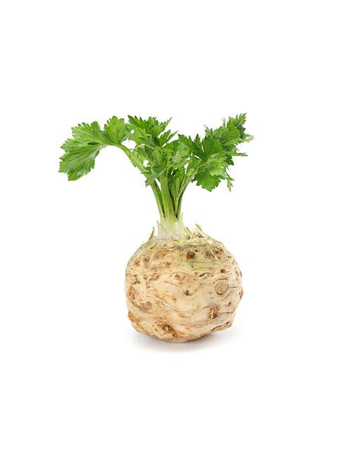 celerie-rave-panier-de-la-semaine--fruits-et-legumes-nicolas-durand-gard-ales