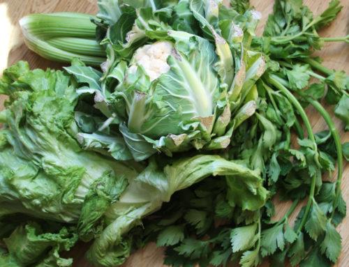 Manger Des Légumes Flétris |  Conseils de Nicolas Durand