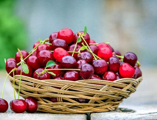 Gard| Les Fruits de l'Été ont la Pêche