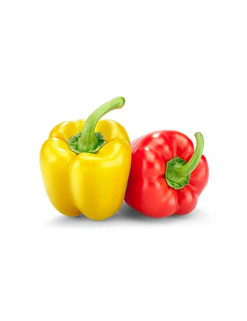 poivron-rouge-et-jaune-nicolas-durand-gard