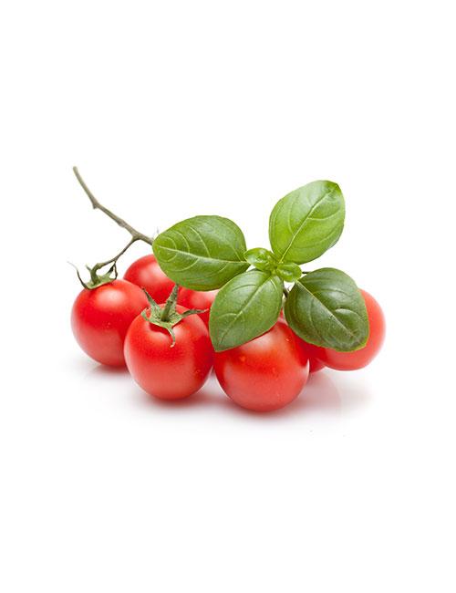tomates-cerise-nicolas-durand-fruit-et-legumes