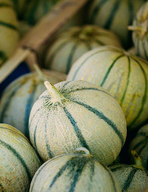 plateau-melons-panier-de-fruits-et-legumes-nicolas-durand-gard-ales