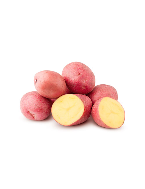 pomme-de-terre-rouge-nicolas-durand-gard-ales