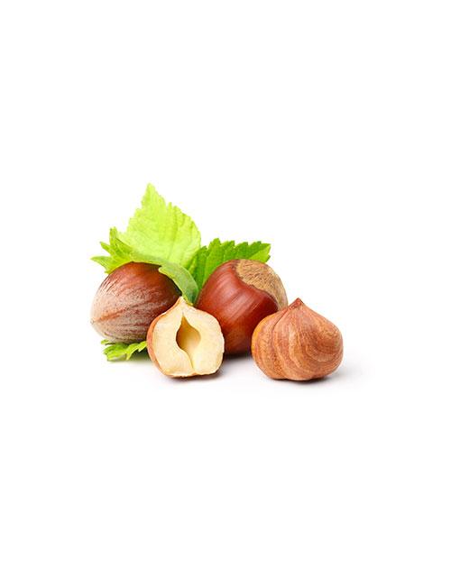 noisette-fruit-nicolas-durand-ales-gard