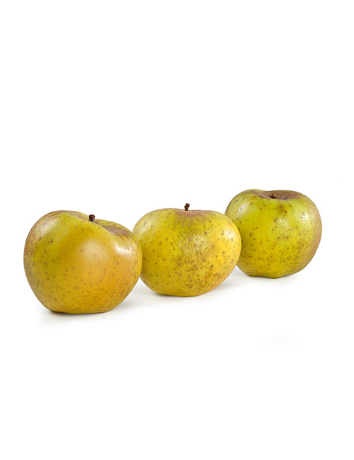 pomme-canada-grise nicolas durand ales gard fruits et legumes